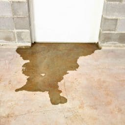 Image for How do I know I'm getting the best deal on flood insurance? post
