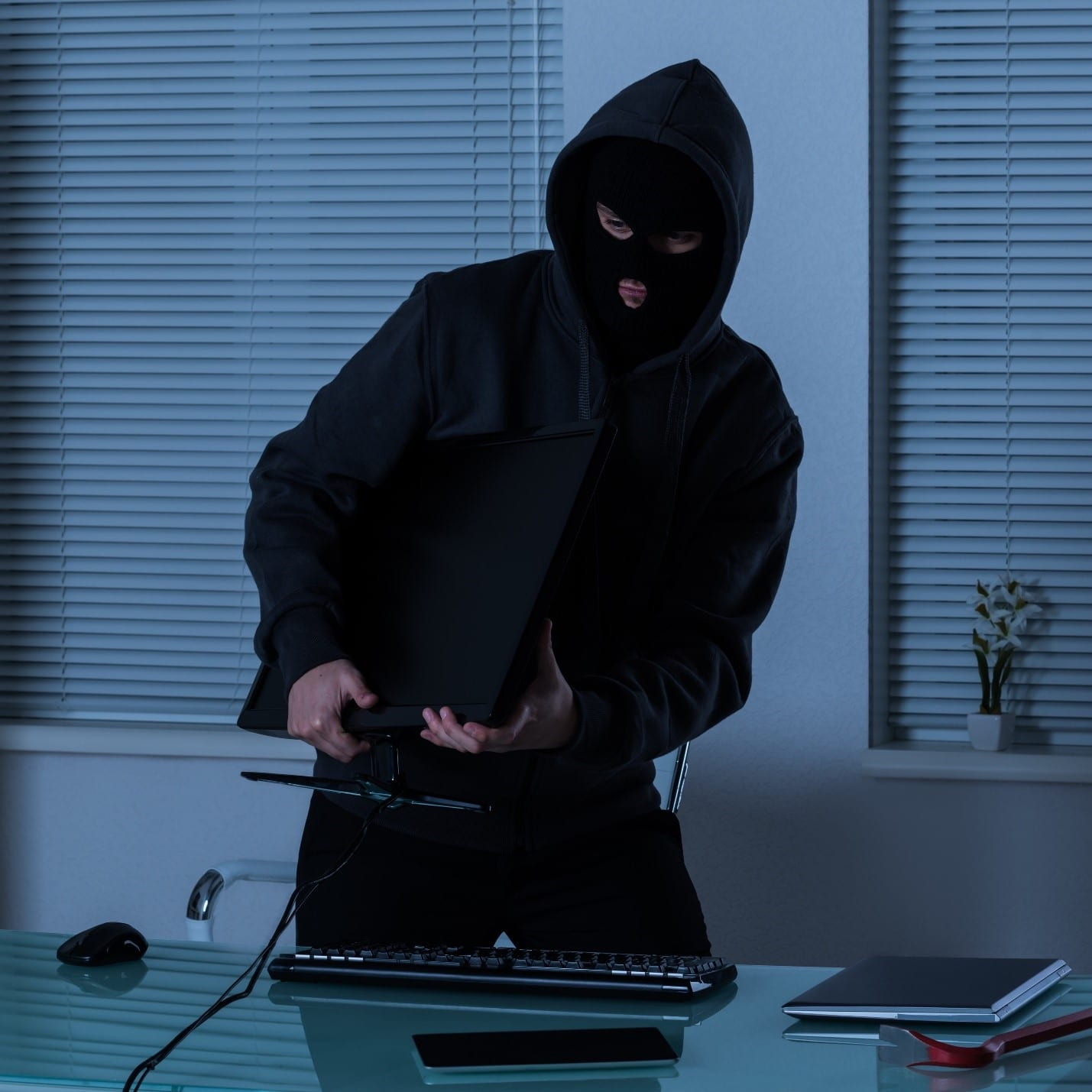 theft occuring in the home