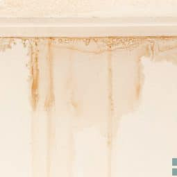 Image for What Water Damage Does Insurance Cover? post